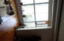 迎宾桥附近 御滨花园 14小 一中学区 精装三室 拎包入住