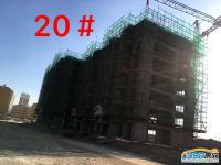 20号楼11.30工程进度