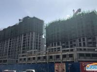 金港园2018.3.23工程进度