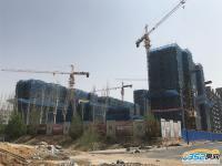 睿和锦城2期4.25工程进度