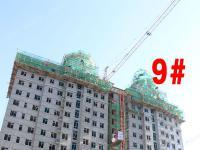 2018.5.24日9#外保温建设