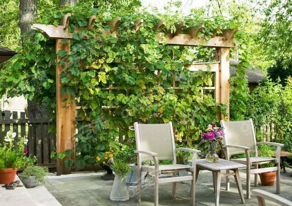 文锦华府一层花园小院 带你领略真正品质生活