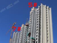 5号楼、7号楼实景图