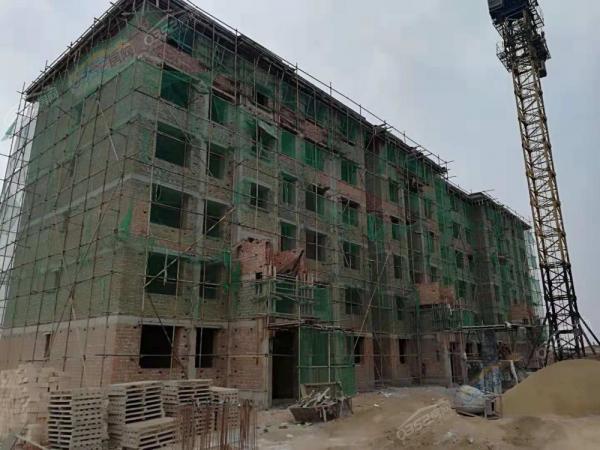 2018.11.3工程进度12#楼