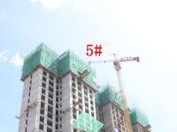 2019.5.27日5号楼实景图