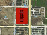 碧桂园卫星图