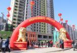 桐城新林营销中心开放盛典 不负久候惊艳全城!