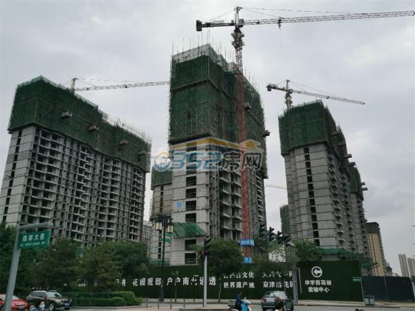 百花谷南区6.29实景图