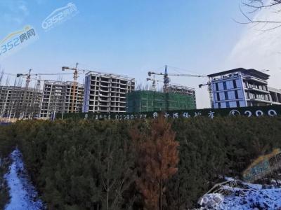 项目12月工程进度图