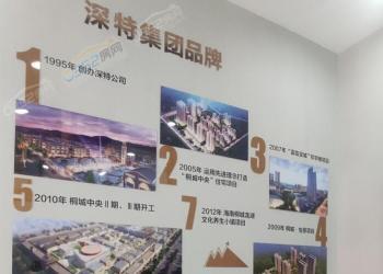 桐城新林全体员工给大同市民拜年啦!