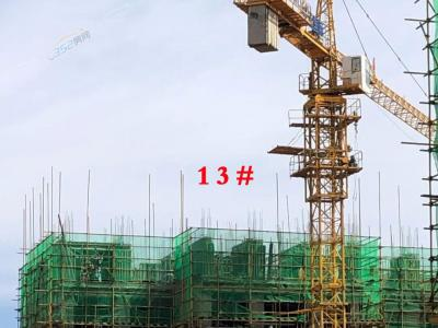 13号楼工程进度
